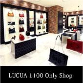 LUCUA 1100